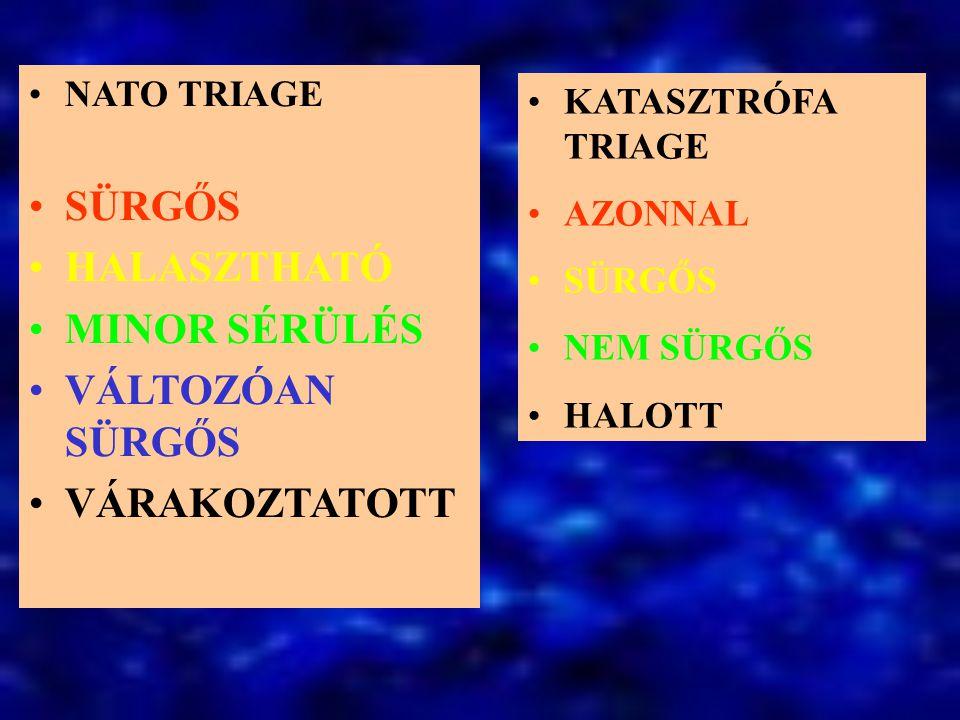 Triage - Team Osztályozó orvos: –Betegvizsgálat –Diagnózis felállítása –Helyzetmegítélés –Döntés Ápoló 1 –Előosztályozás –Vetkőztetés –Anamnézis Ápoló 2.