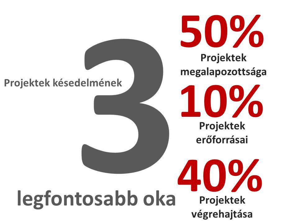 Projektek késedelmének legfontosabb oka Projektek megalapozottsága Projektek erőforrásai Projektek végrehajtása 50% 10% 40%