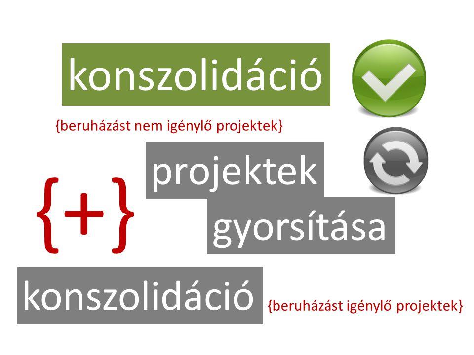 konszolidáció projektek gyorsítása {beruházást nem igénylő projektek} konszolidáció {beruházást igénylő projektek} {+}