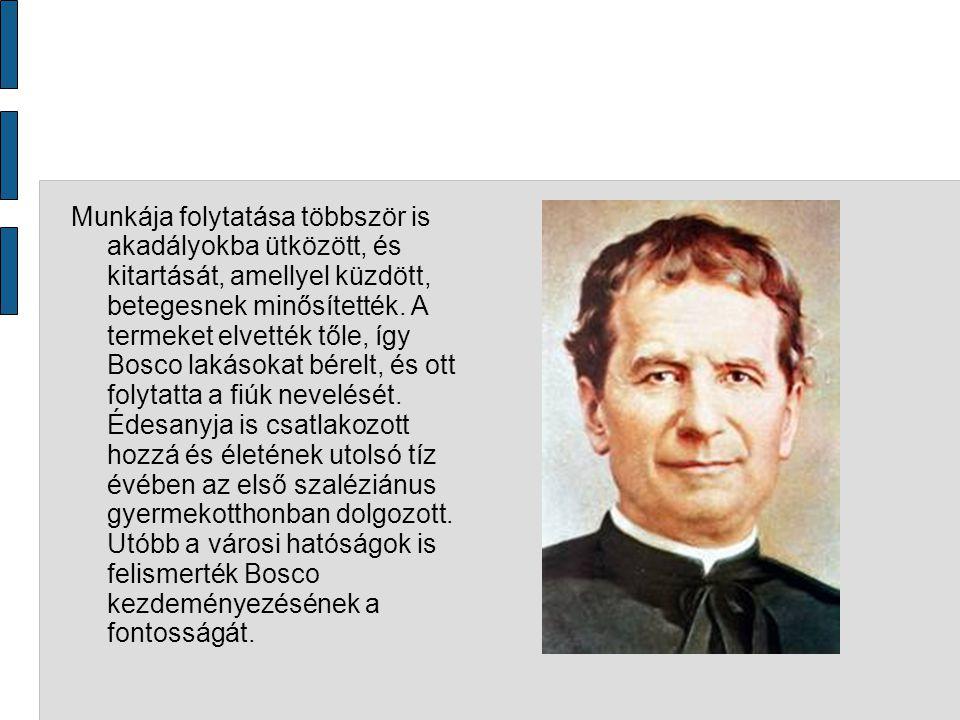 Kapcsolata IX.Piusz pápával IX. Piusz Bosco Szent János pápája volt.