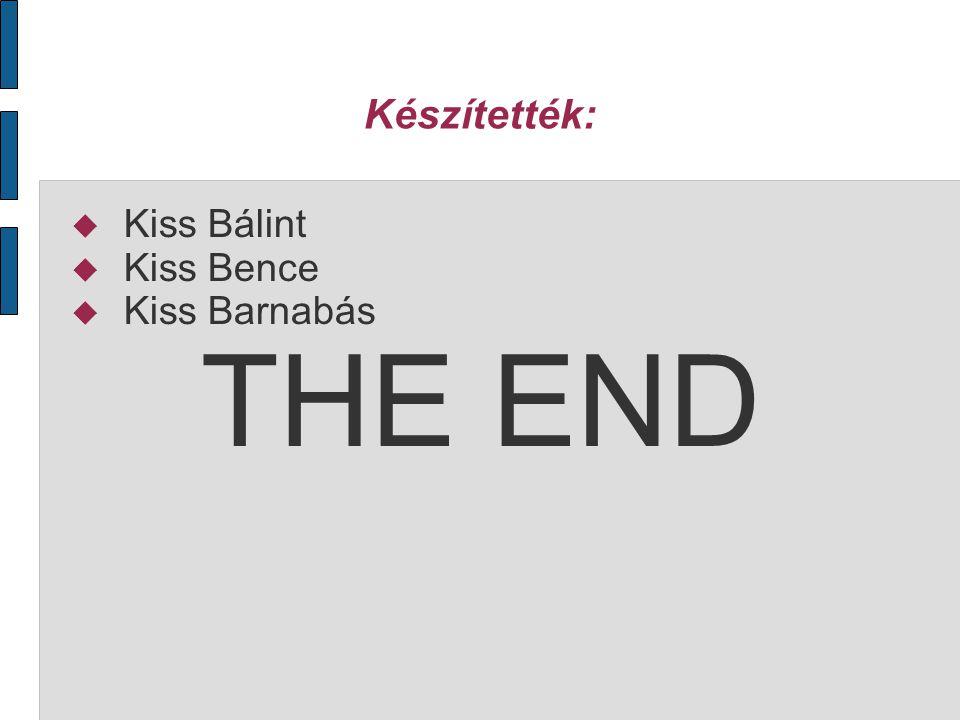 Készítették:  Kiss Bálint  Kiss Bence  Kiss Barnabás THE END