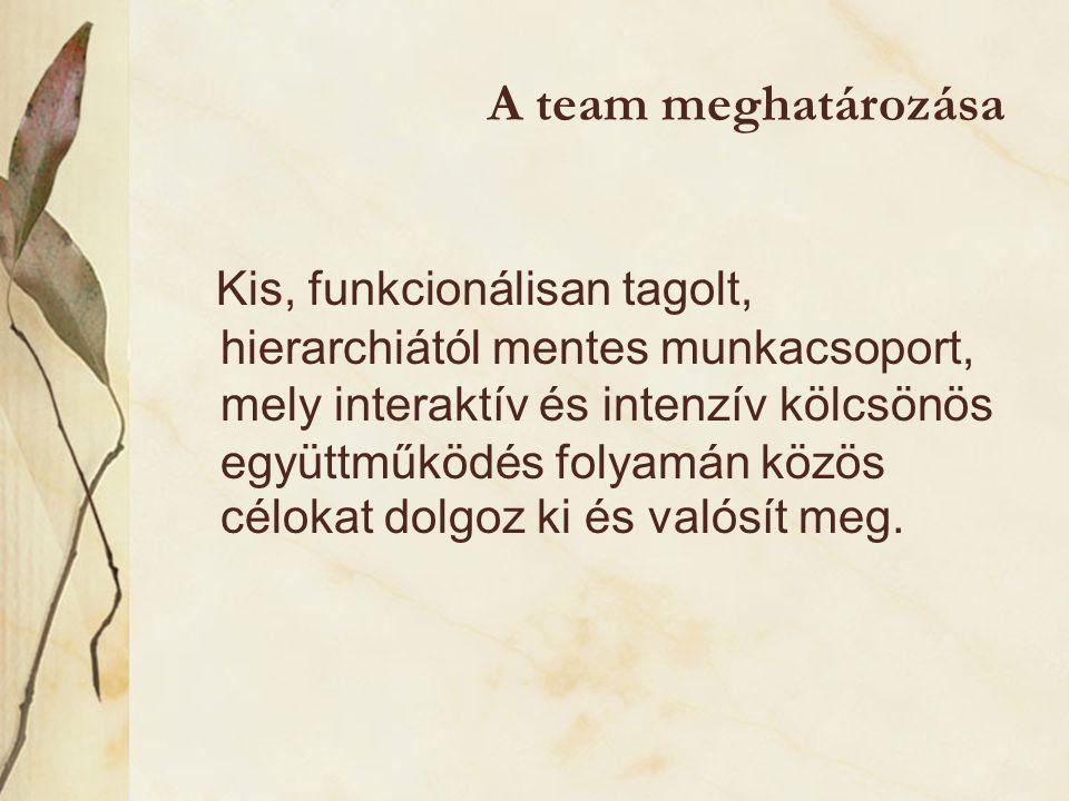 A team meghatározása Kis, funkcionálisan tagolt, hierarchiától mentes munkacsoport, mely interaktív és intenzív kölcsönös együttműködés folyamán közös