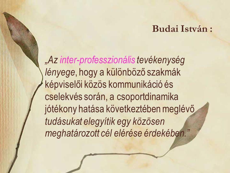 """Budai István : """"Az inter-professzionális tevékenység lényege, hogy a különböző szakmák képviselői közös kommunikáció és cselekvés során, a csoportdina"""