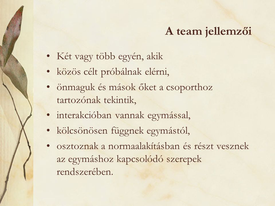 A team jellemzői Két vagy több egyén, akik közös célt próbálnak elérni, önmaguk és mások őket a csoporthoz tartozónak tekintik, interakcióban vannak e