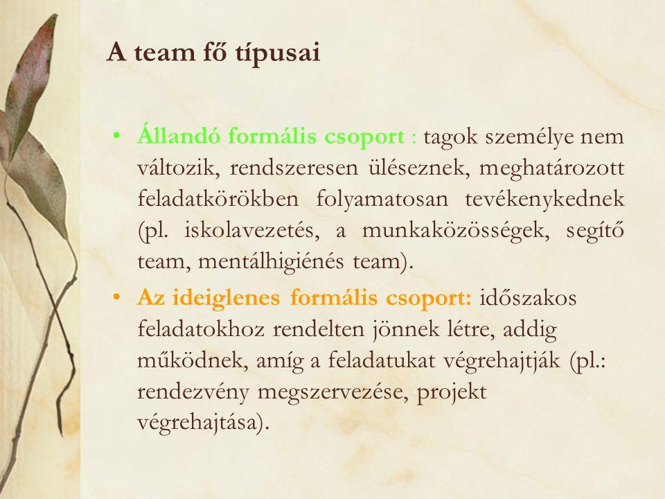A team fő típusai Állandó formális csoport : tagok személye nem változik, rendszeresen üléseznek, meghatározott feladatkörökben folyamatosan tevékenyk