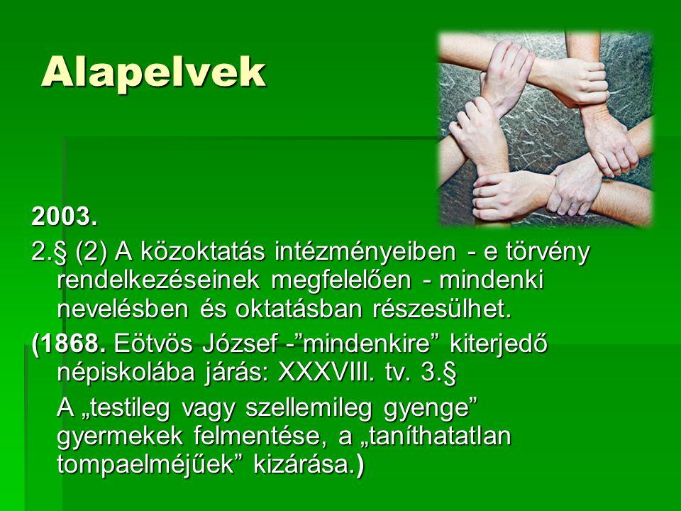 Sajátos nevelési igényű gyermekek 121.§ 29.
