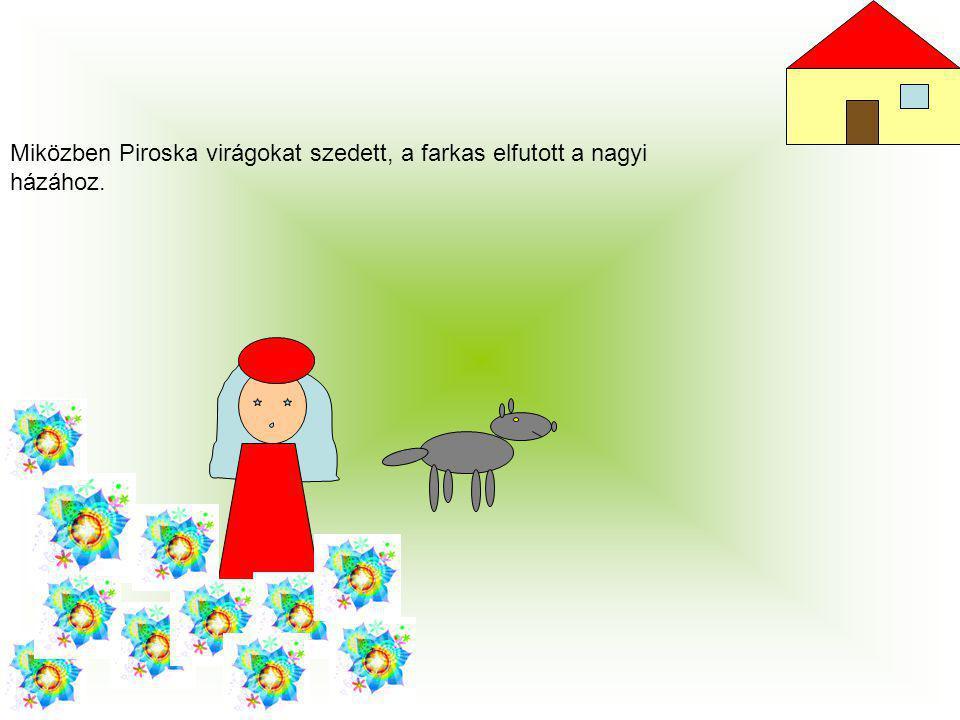 Miközben Piroska virágokat szedett, a farkas elfutott a nagyi házához.