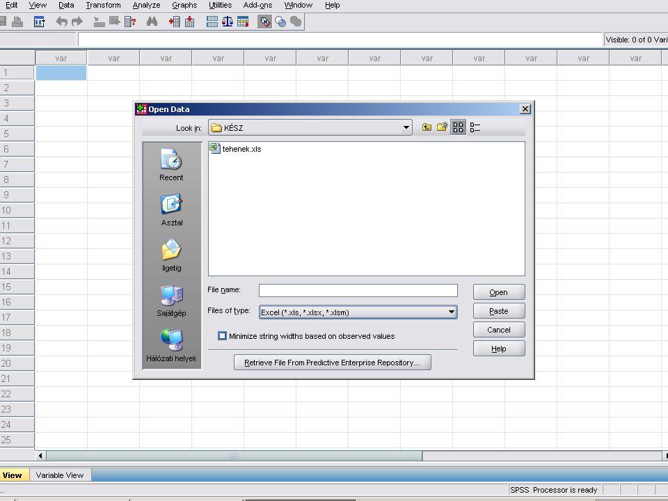 Az Excel kiválasztása után, ha az adott EXCEL munkafüzet több munkalapból áll.