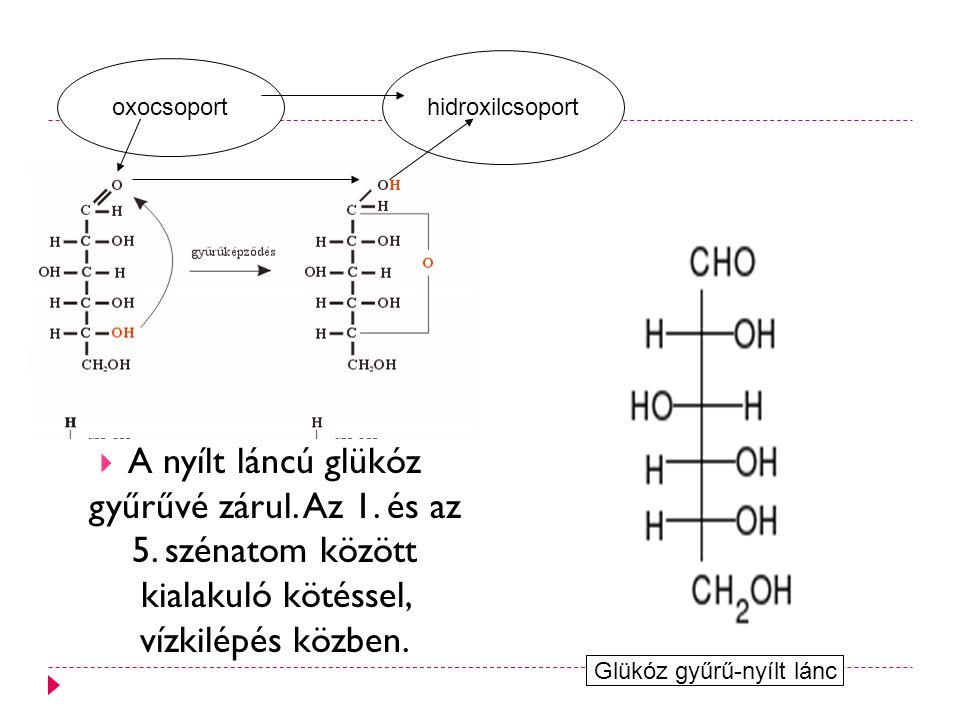  A nyílt láncú glükóz gyűrűvé zárul.Az 1. és az 5.