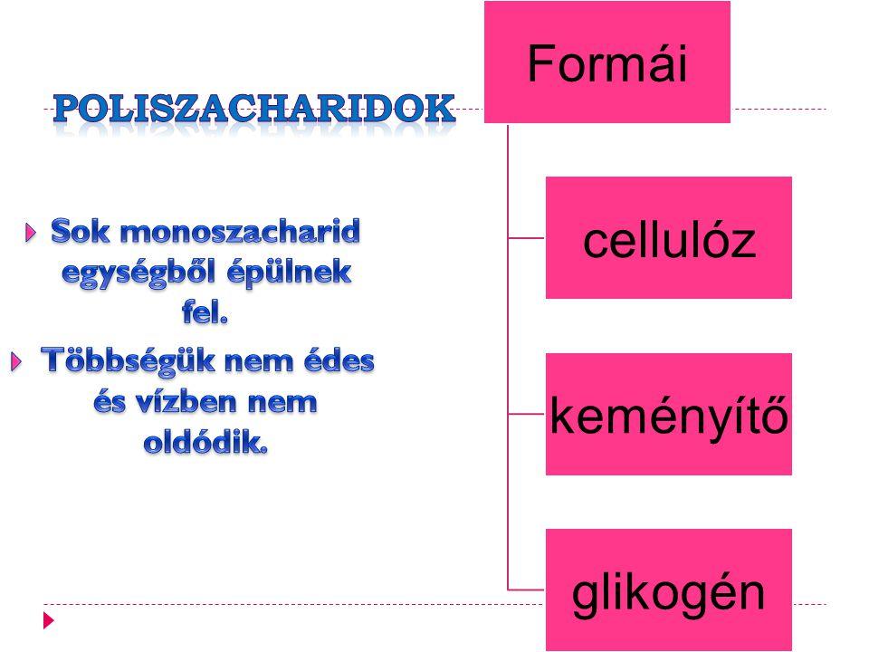 Formái cellulóz keményítő glikogén