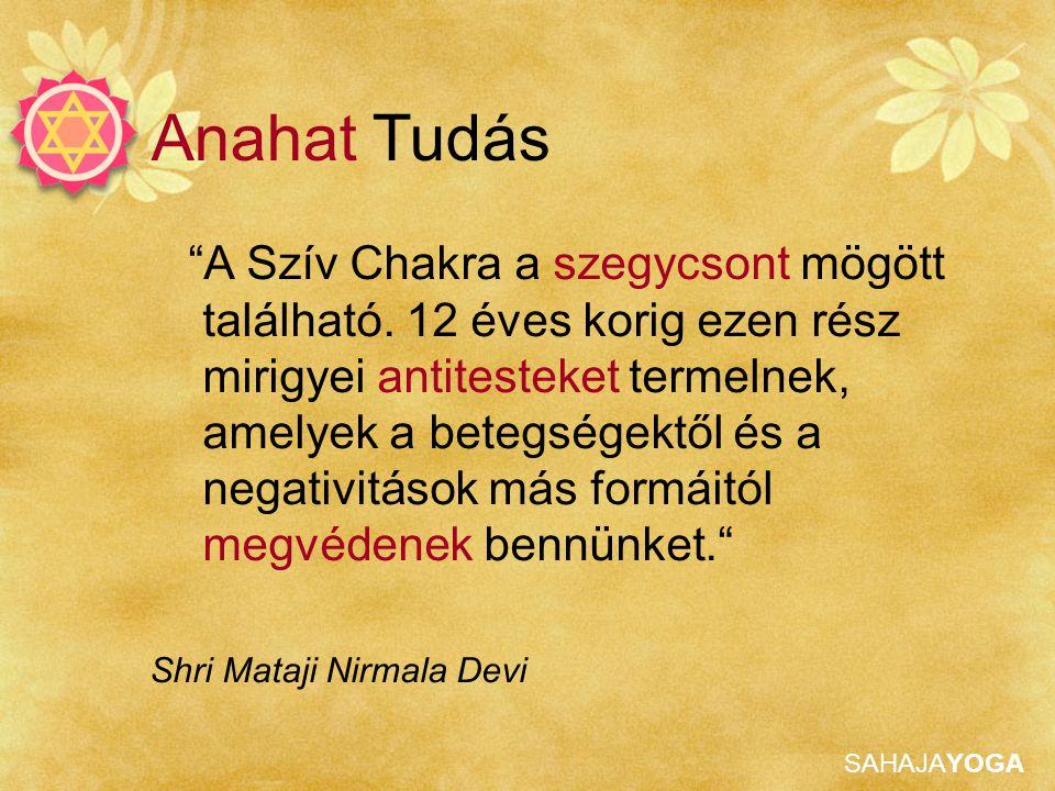 SAHAJAYOGA Anahat Tisztítása Jobb szív chakra Mantra: Shri Sita Rama Kijelentés: Anyám, ténylegesen Te vagy bennem a felelősség vagy Shri Mataji, te vagy a helyes életvitel határa és egy jó apa jóindulata Adjunk vibrációkat a chakrának, használjunk jégpakolást Fejlesszük ki magunkban a jó és védelmező apa, férj tulajdonságait.