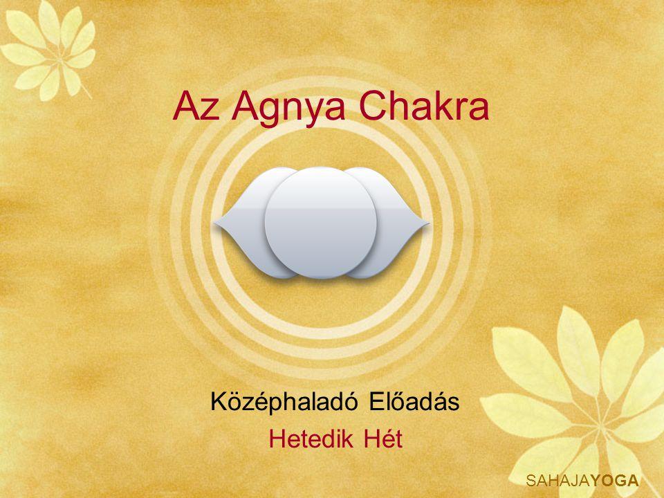 SAHAJAYOGA Az Agnya Chakra Középhaladó Előadás Hetedik Hét