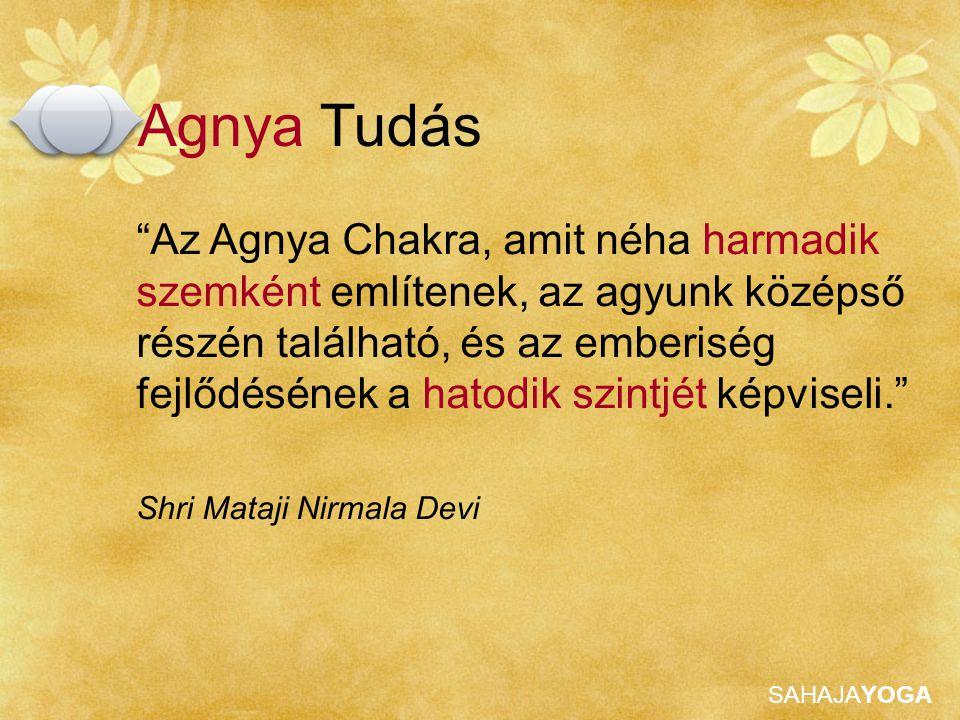 """SAHAJAYOGA """"Az Agnya Chakra, amit néha harmadik szemként említenek, az agyunk középső részén található, és az emberiség fejlődésének a hatodik szintjé"""