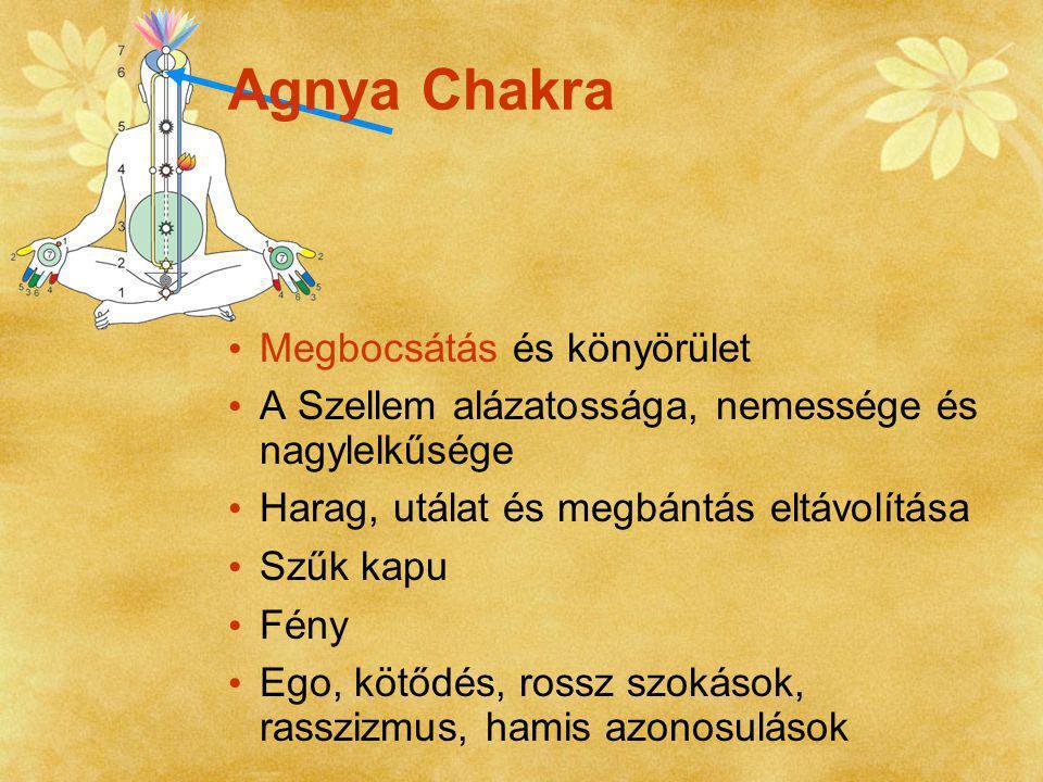 Az összes chakra integrálódása Az emberi tudat fejlődésének legmagasabb foka A valóság közvetlen és abszolút érzékelése a központi idegrendszerben Elménk és felfogásunk feletti Önmegvalósulás - Shri Mataji jelen van az egész emberiségnek Sahasrara Chakra