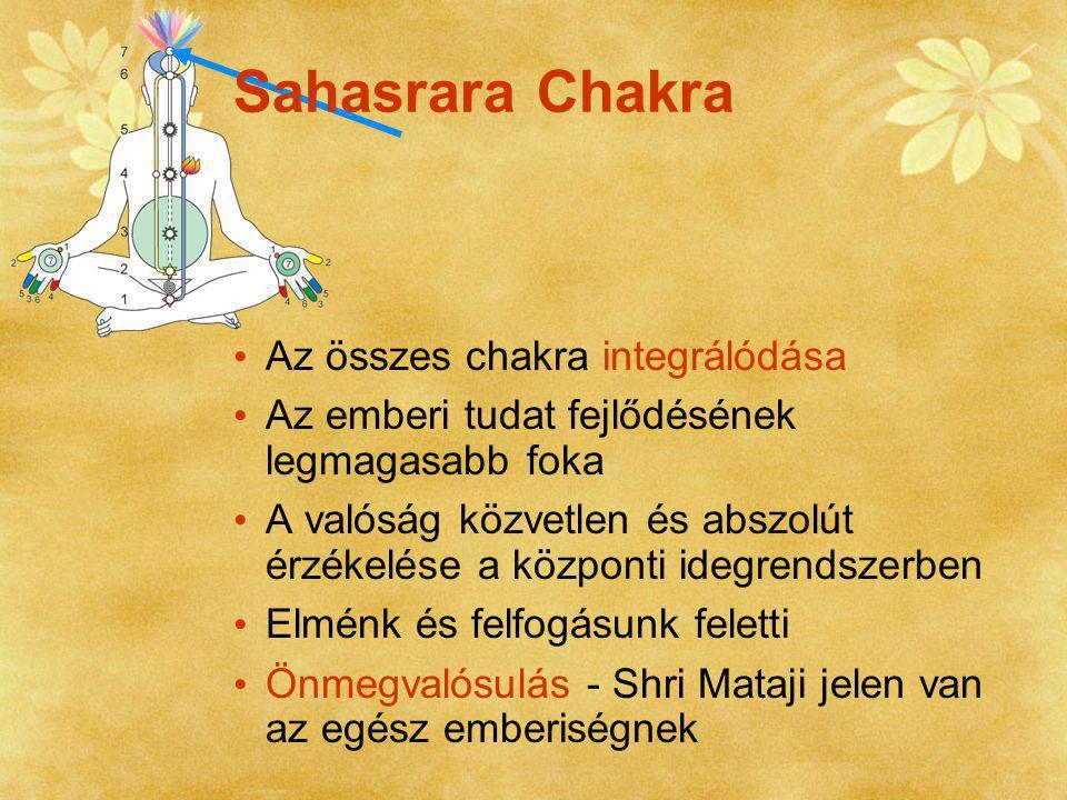 A chakrák fokozatos fejlődése Belső nyugalom Fizikai, pszichikai és pszichoszomatikus problémák valamint gyógyíthatatlan betegségek eltűnése Családi, szakmai és szellemi élet javulása Naponta kétszeri meditáció szükséges Rendszeres Meditáció