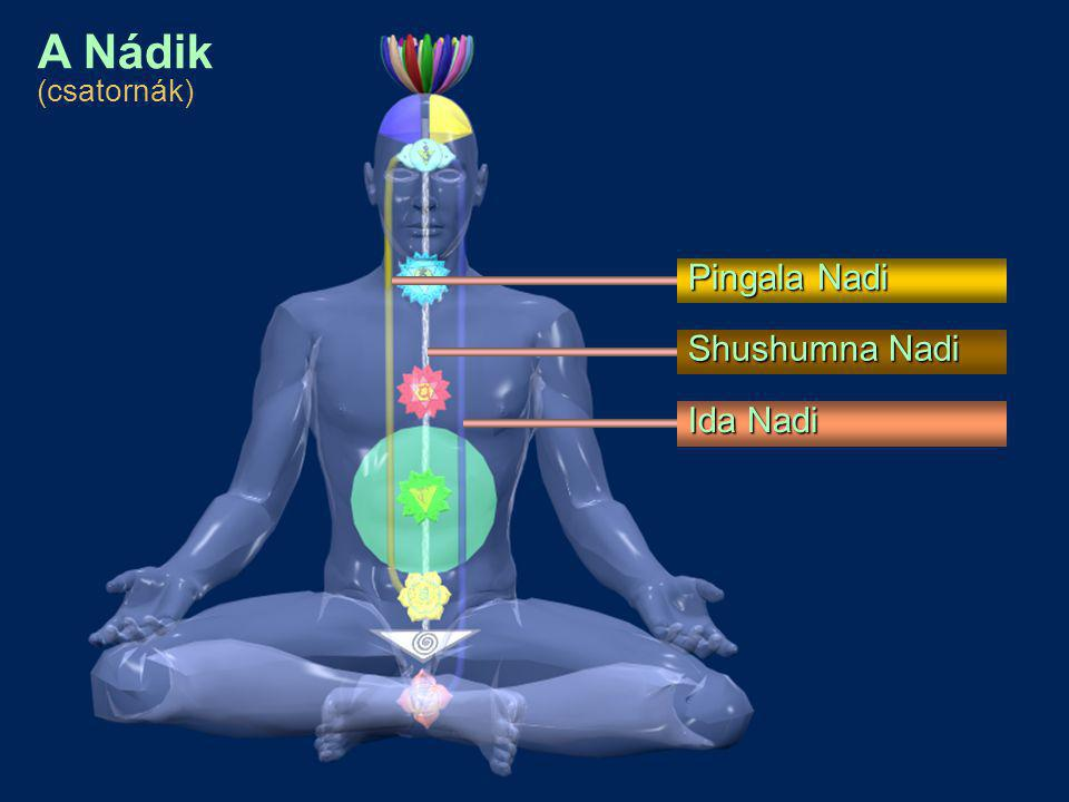 Kundalini Swadisthana Chakra Nabhi Chakra/Void Anahata (Heart) Chakra Vishuddhi Chakra Agnya Chakra Sahasrara Chakra Mooladhara Chakra A Chakrák (energia központok)