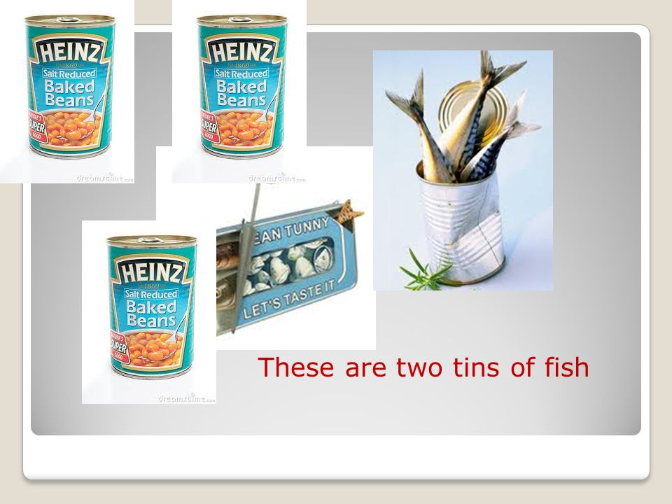 These are three tins of beans These are two tins of fish