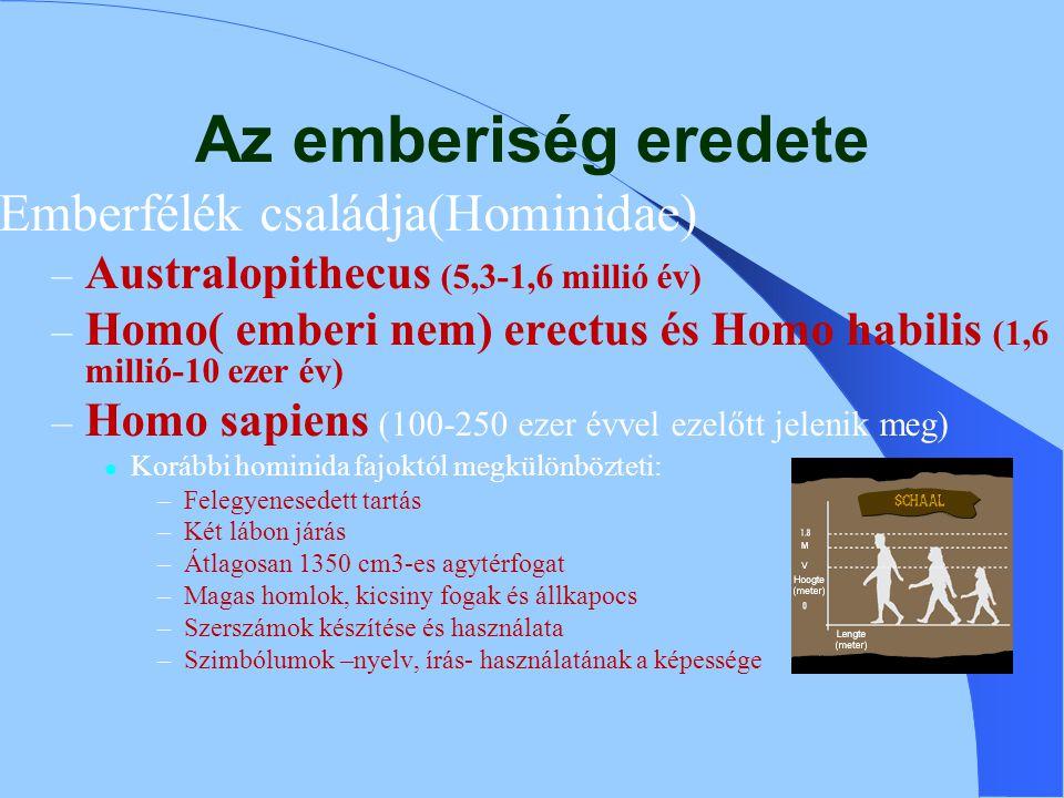 Az emberiség eredete Emberfélék családja(Hominidae) – Australopithecus (5,3-1,6 millió év) – Homo( emberi nem) erectus és Homo habilis (1,6 millió-10 ezer év) – Homo sapiens (100-250 ezer évvel ezelőtt jelenik meg) Korábbi hominida fajoktól megkülönbözteti: –Felegyenesedett tartás –Két lábon járás –Átlagosan 1350 cm3-es agytérfogat –Magas homlok, kicsiny fogak és állkapocs –Szerszámok készítése és használata –Szimbólumok –nyelv, írás- használatának a képessége