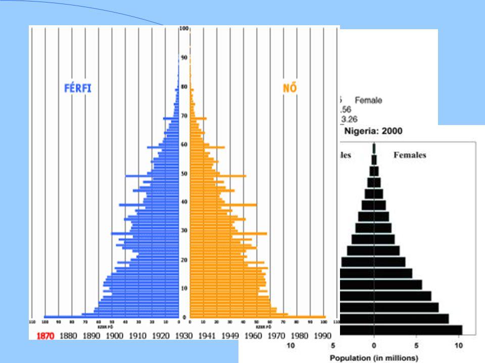 Korfa A korfa alakja alapján demográfiai típusok különböztethetők meg: fiatal népesség korfája: széles alapú, fölfelé gyorsan keskenyedő korfa, a fiatal korcsoportok magas (a gyermekkorúak 40-50%), az idősebbek alacsony (2-4%) aránya jellemzi.
