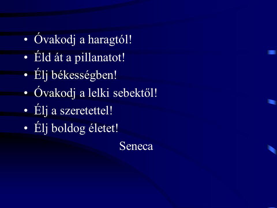 Óvakodj a haragtól! Éld át a pillanatot! Élj békességben! Óvakodj a lelki sebektől! Élj a szeretettel! Élj boldog életet! Seneca