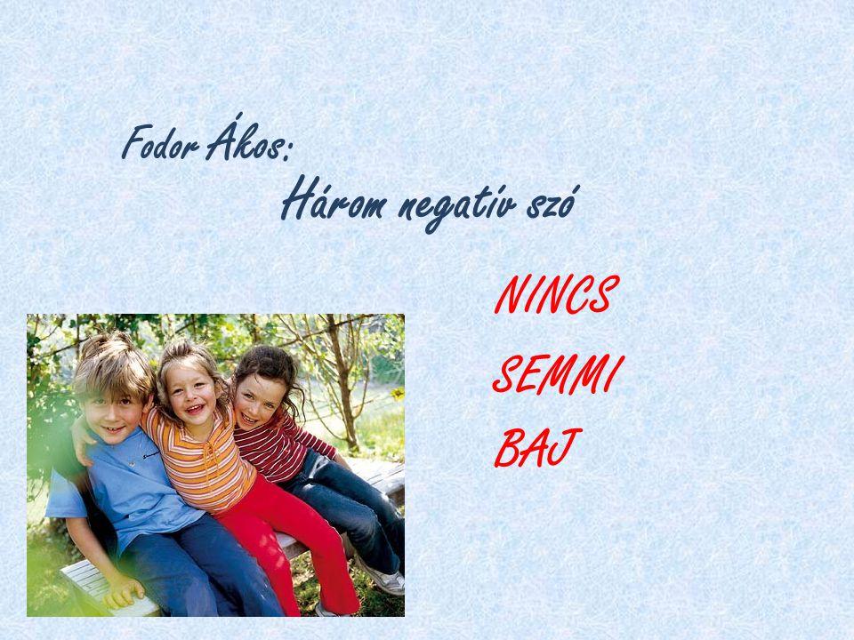 Fodor Ákos : Három negatív szó NINCS SEMMI BAJ