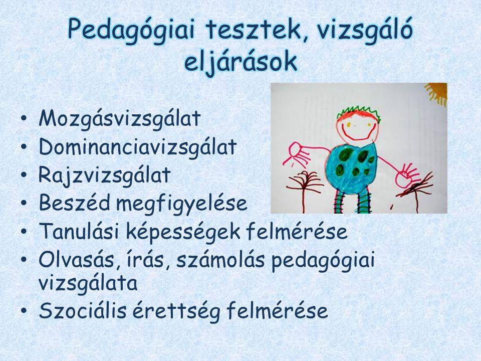Szakmai ismeretek átadása, beszélgetések Esetmegbeszélések szülőkkel, pedagógusokkal, egyéb szakemberekkel Fejlesztő pedagógusi munkaközösség koordinálása