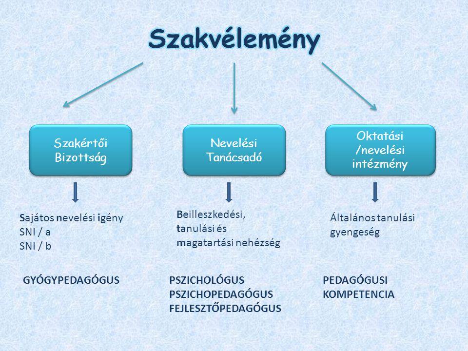 Sajátos nevelési igény SNI / a SNI / b GYÓGYPEDAGÓGUS Beilleszkedési, tanulási és magatartási nehézség PSZICHOLÓGUS PSZICHOPEDAGÓGUS FEJLESZTŐPEDAGÓGU