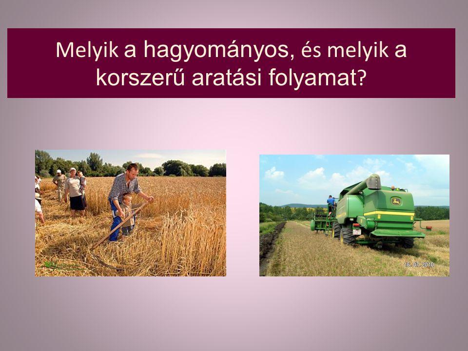 Melyik a hagyományos, és melyik a korszerű aratási folyamat ?