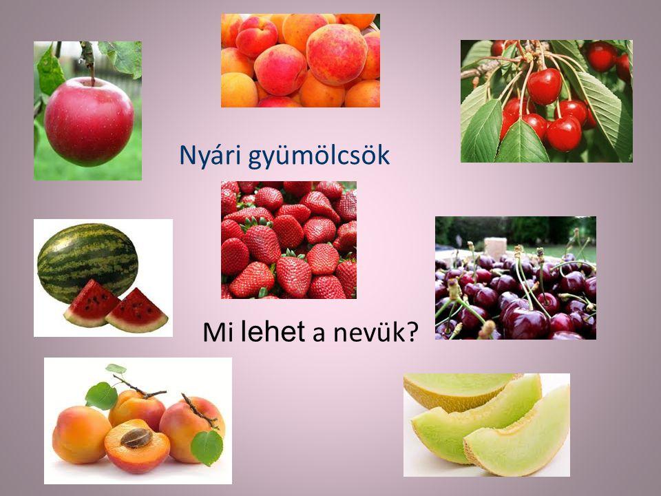 Nyári gyümölcsök Mi lehet a nevük?