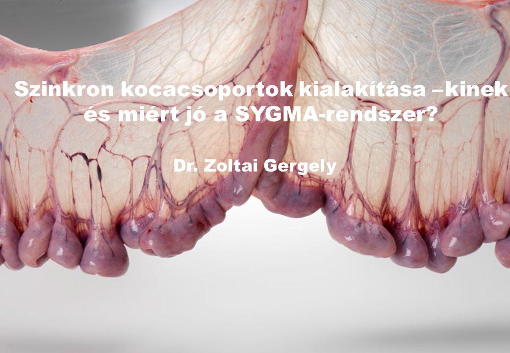 Szinkron kocacsoportok kialakítása – kinek és miért jó a SYGMA-rendszer Dr. Zoltai Gergely