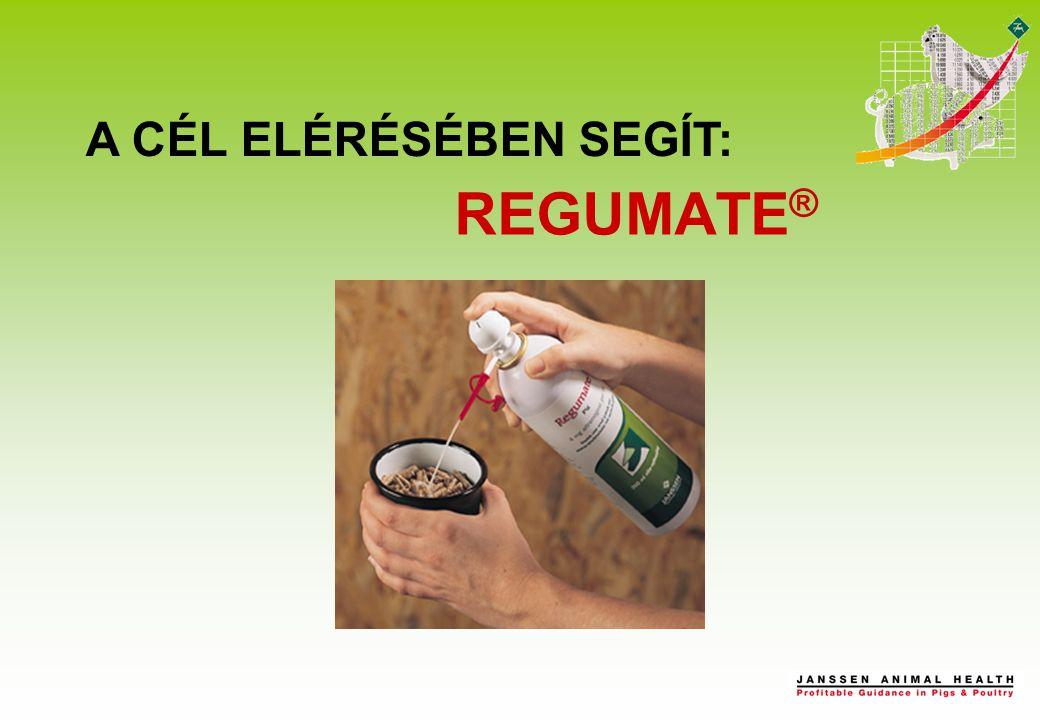 REGUMATE ® A CÉL ELÉRÉSÉBEN SEGÍT: