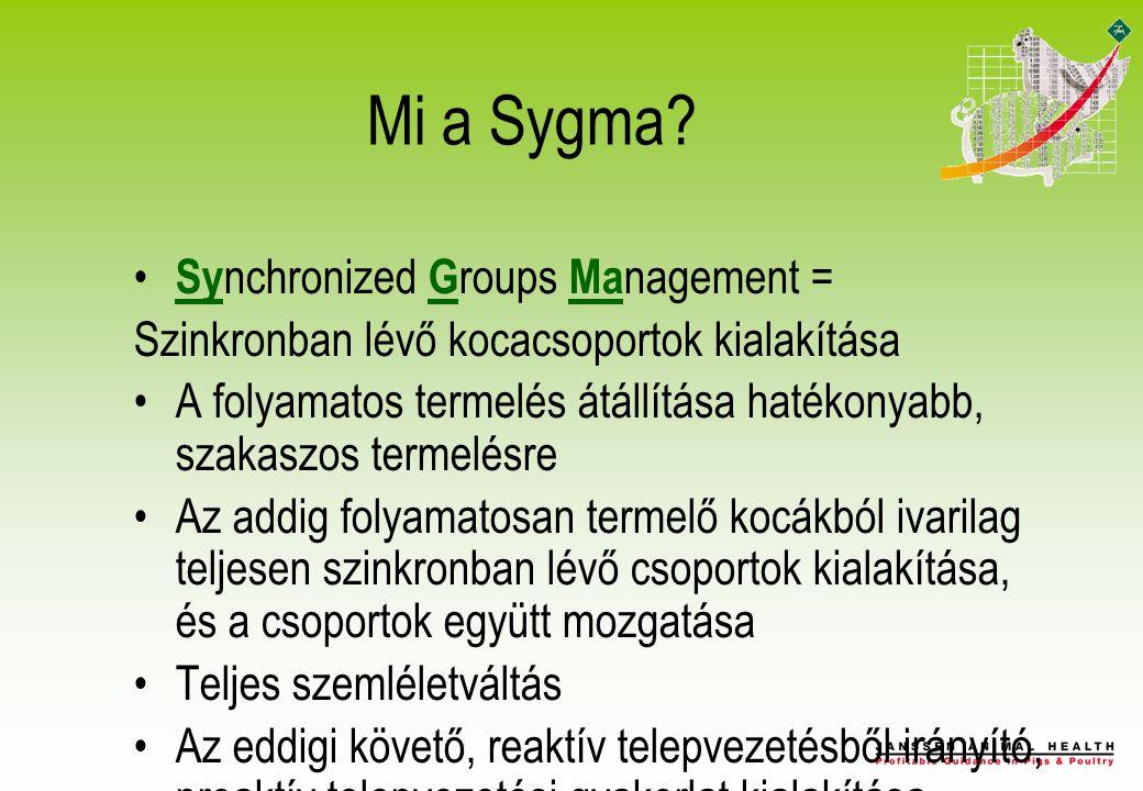 Mi a Sygma.
