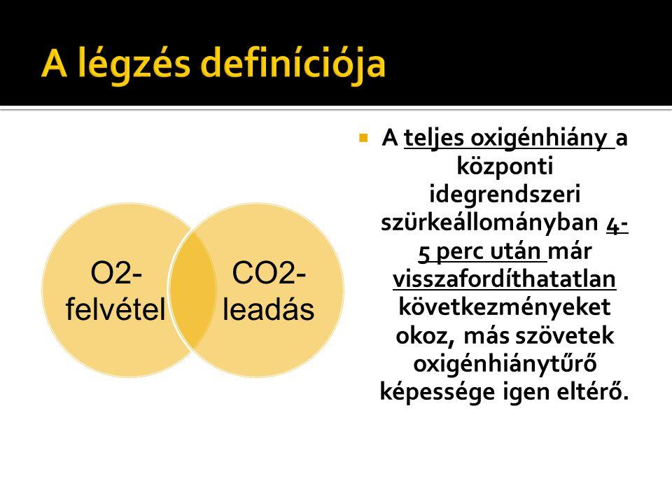 O2- felvétel CO2- leadás  A teljes oxigénhiány a központi idegrendszeri szürkeállományban 4- 5 perc után már visszafordíthatatlan következményeket ok