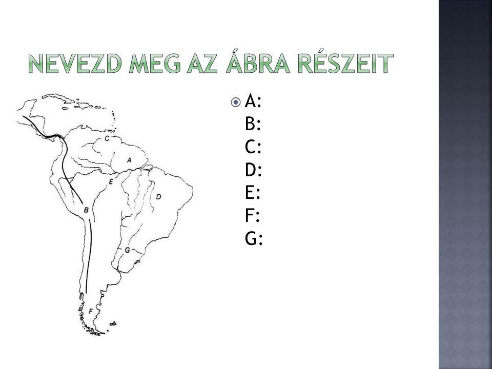  A: B: C: D: E: F: G: