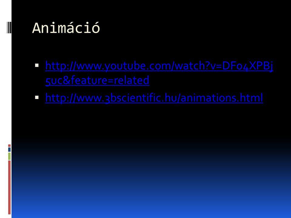 Animáció  http://www.youtube.com/watch?v=DF04XPBj 5uc&feature=related http://www.youtube.com/watch?v=DF04XPBj 5uc&feature=related  http://www.3bscie