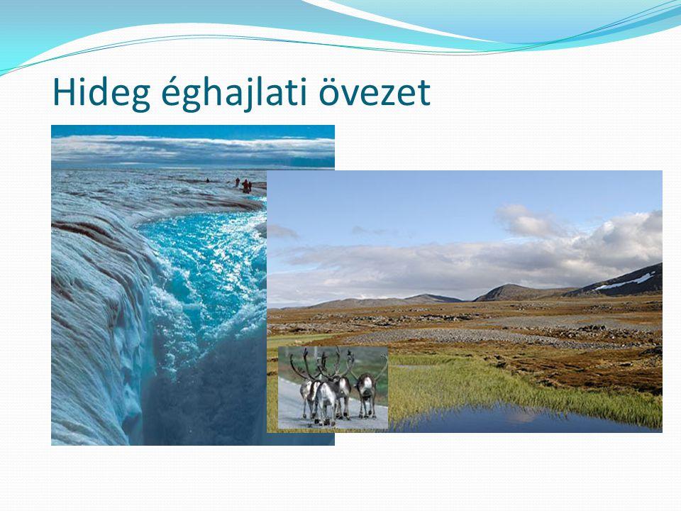 Hideg éghajlati övezet jellemzése Sarkköri Hideg Éghajlati öv 200-300mm Sarki szél 2évszak 9/10hónap hideg tél 2-3hónap hűvös nyár Tundra ( fűz, nyír, éger, lucfenyő) Erdős- Cserjés- Füves- Kavicsos- Tundra-talaj Sarkvidéki Hideg Éghajlati öv 200mm Sarki szél 1 évszak; Zord/hideg tél Növényzet nincs ( mohák, moszatok) Talaj nincs
