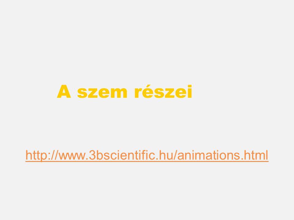 Animáció http://celebrate.ls.no/english/animations/ science/oyets_sanseceller.swf