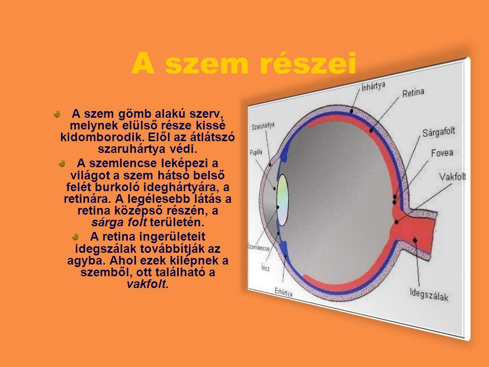 A szem leképezési hibái szemüveggel korrigálhatóak