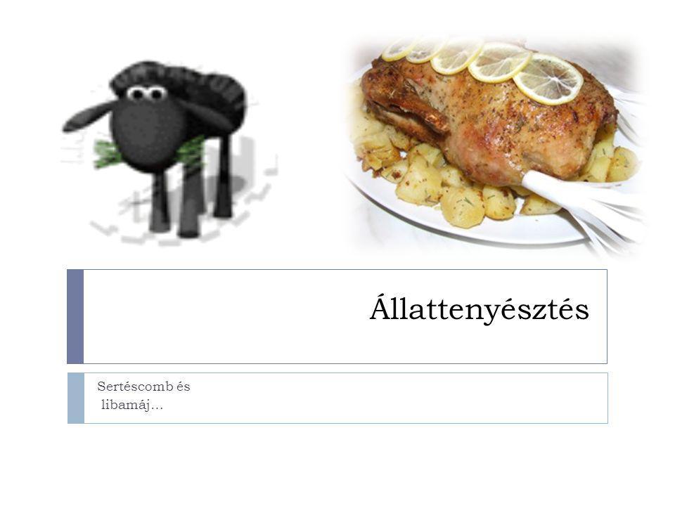 Állattenyésztés Sertéscomb és libamáj…