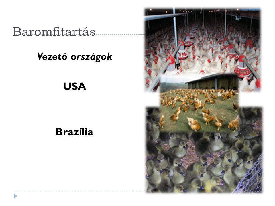 Baromfitartás Vezető országok USA Brazília