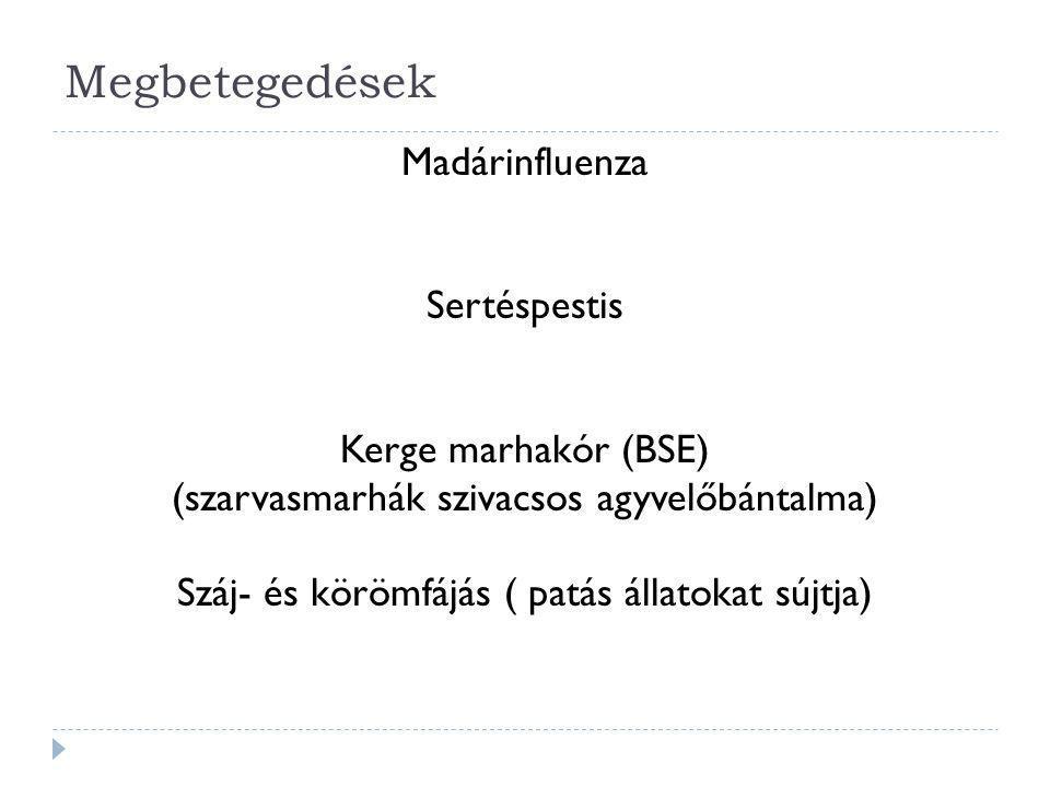 Megbetegedések Madárinfluenza Sertéspestis Kerge marhakór (BSE) (szarvasmarhák szivacsos agyvelőbántalma) Száj- és körömfájás ( patás állatokat sújtja)