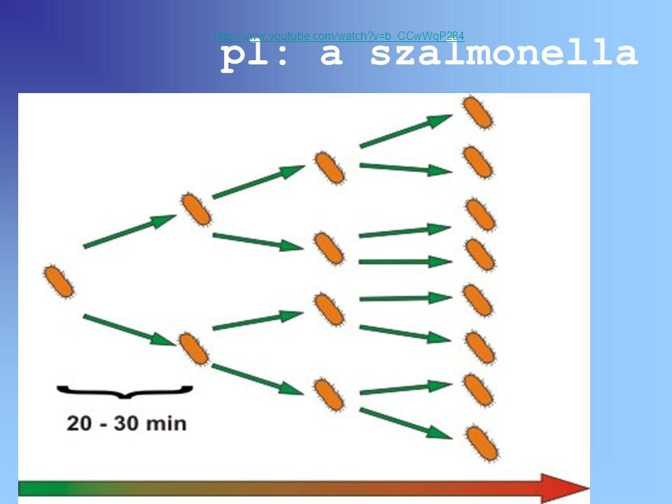 pl: a szalmonella http://www.youtube.com/watch?v=b_CCwWqP284