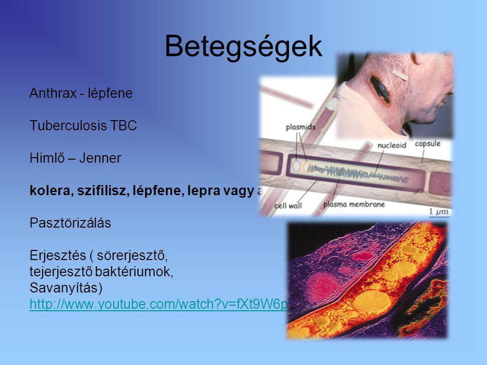 Betegségek Anthrax - lépfene Tuberculosis TBC Himlő – Jenner kolera, szifilisz, lépfene, lepra vagy a pestis Pasztörizálás Erjesztés ( sörerjesztő, te
