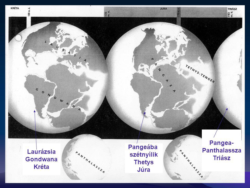 Pangea- Panthalassza Triász Pangeába szétnyílik Thetys Júra Laurázsia Gondwana Kréta
