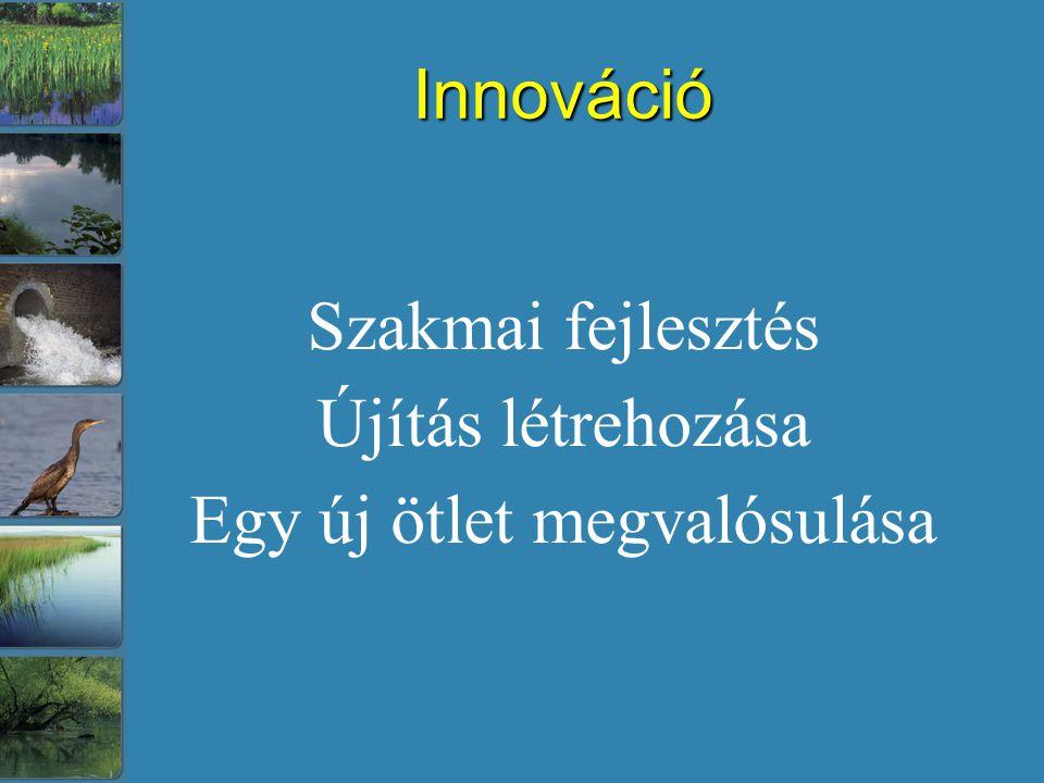 Innováció Szakmai fejlesztés Újítás létrehozása Egy új ötlet megvalósulása