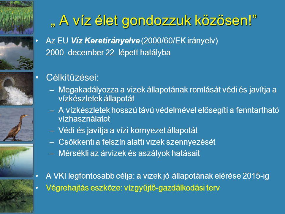 """"""" A víz élet gondozzuk közösen!"""" Az EU Víz Keretirányelve (2000/60/EK irányelv) 2000. december 22. lépett hatályba Célkitűzései: –Megakadályozza a viz"""