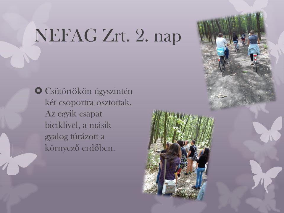 NEFAG Zrt. 2. nap  Csütörtökön úgyszintén két csoportra osztottak.