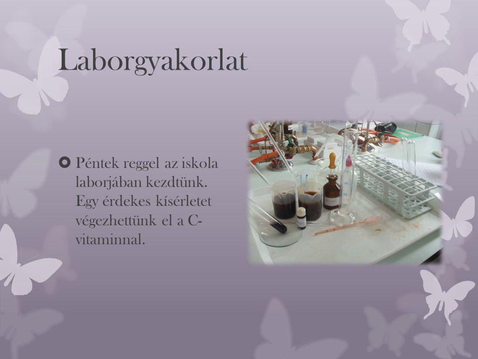 Laborgyakorlat  Péntek reggel az iskola laborjában kezdtünk.