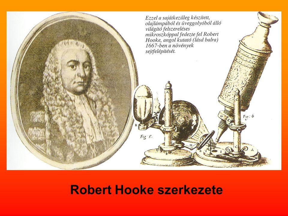 Robert Hooke szerkezete