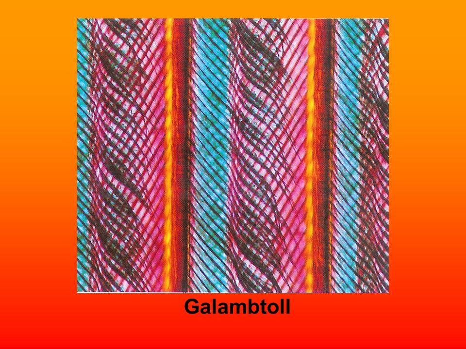 Galambtoll